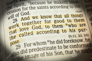Highlighted Bible verse in Bible Romans 8:28: And we know that all things work together for good to them who love God, to them who are the called according to His purpose